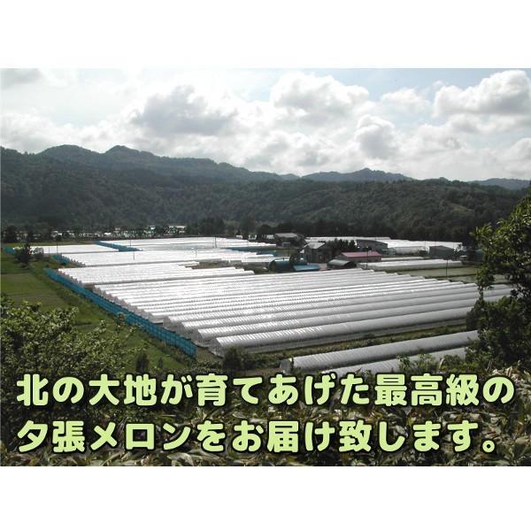 夕張メロン 訳あり 1.3から1.6kg前後(1玉) 個選品 わけあり グルメ 赤肉メロン 北海道|yubari-shouten|18