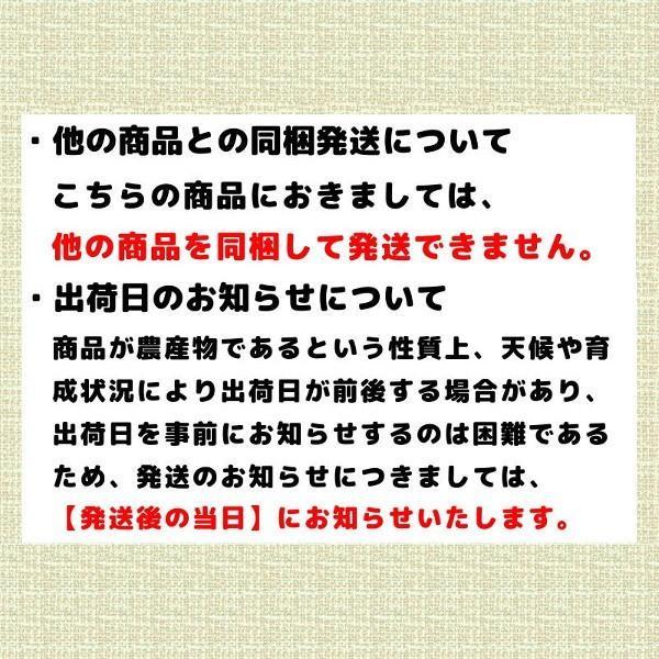 夕張メロン 訳あり 1.3から1.6kg前後(1玉) 個選品 わけあり グルメ 赤肉メロン 北海道|yubari-shouten|05