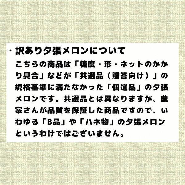 夕張メロン 訳あり 1.3から1.6kg前後(1玉) 個選品 わけあり グルメ 赤肉メロン 北海道|yubari-shouten|06
