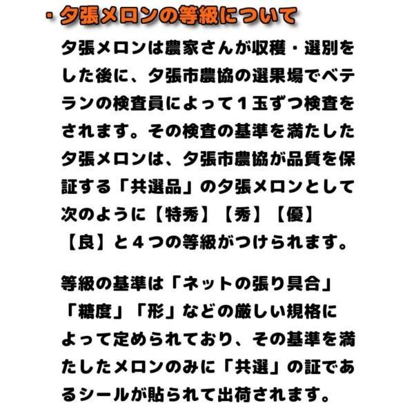 夕張メロン 訳あり 1.3から1.6kg前後(1玉) 個選品 わけあり グルメ 赤肉メロン 北海道|yubari-shouten|09
