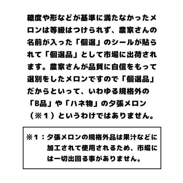 夕張メロン 訳あり 1.3から1.6kg前後(1玉) 個選品 わけあり グルメ 赤肉メロン 北海道|yubari-shouten|10
