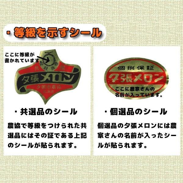 夕張メロン 訳あり 2玉 (個選品・1玉あたり1.3から1.6kg前後)|yubari-shouten|11