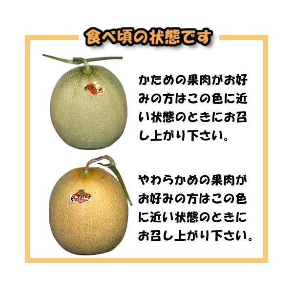 夕張メロン 訳あり 2玉 (個選品・1玉あたり1.3から1.6kg前後)|yubari-shouten|17