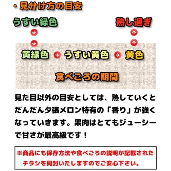 お中元 贈答品 夕張メロン 夕張市農協 共選品 良品 1玉 1.3から1.6kg前後 赤肉メロン|yubari-shouten|15