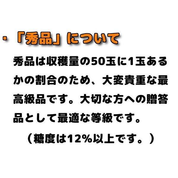 お中元 贈答品 夕張メロン 夕張市農協 共選品 秀品 1玉 1.3から1.6kg前後 赤肉メロン|yubari-shouten|08