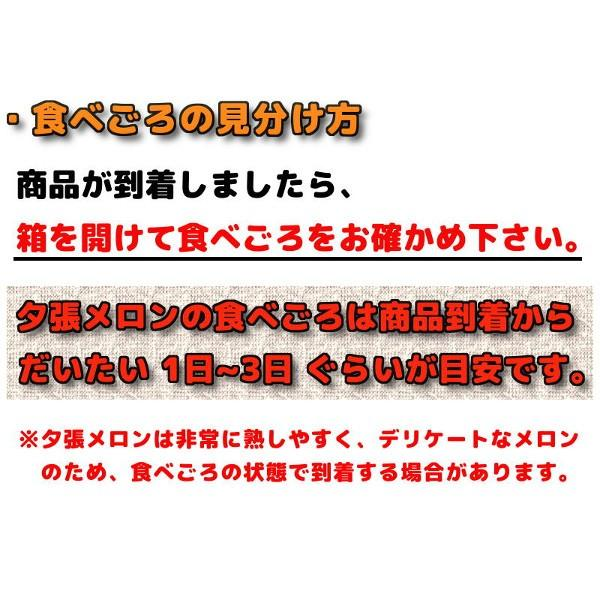お中元 贈答品 夕張メロン 夕張市農協 共選品 秀品 3玉 1玉あたり 1.3から1.6kg前後 赤肉メロン|yubari-shouten|14