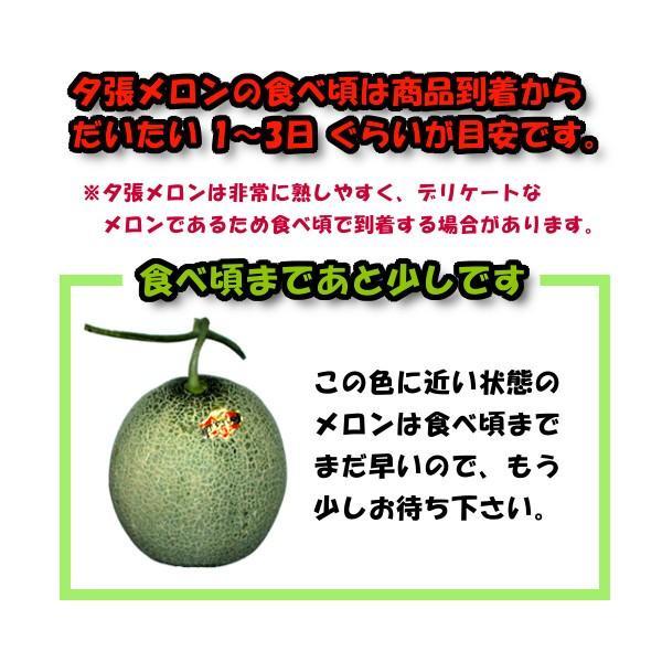 お中元 贈答品 夕張メロン 夕張市農協 共選品 秀品 3玉 1玉あたり 1.3から1.6kg前後 赤肉メロン|yubari-shouten|16