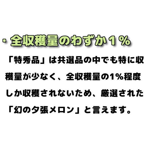 贈答品 ギフト 夕張メロン 夕張市農協 共選品 特秀品 1玉 1.3から1.6kg前後|yubari-shouten|07