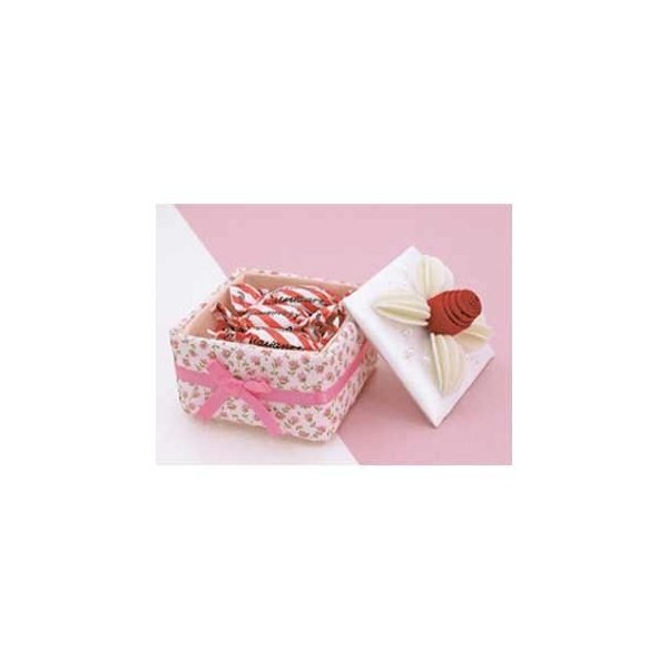 「PA-666 マルチボックス・ケーキ」 エコクラフト手づくりキット-オリムパス (メール便可/お取り寄せ) yucasiho 02