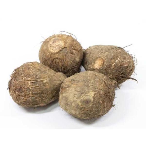 国産 小芋 Lサイズ 1kg (直径:約4cm/ヶ 里いも さといも こいも)  [冷蔵]