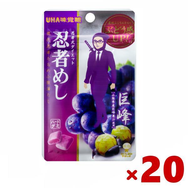 味覚糖 忍者めし 巨峰味 20入(10×2) (ポイント消化) (np)(あすつく対応) メール便全国送料無料