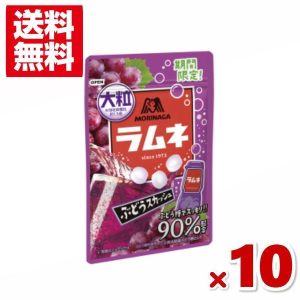 森永 38g 大粒ラムネ ぶどうスカッシュ 10入 (ポイント消化) (np) メール便全国送料無料