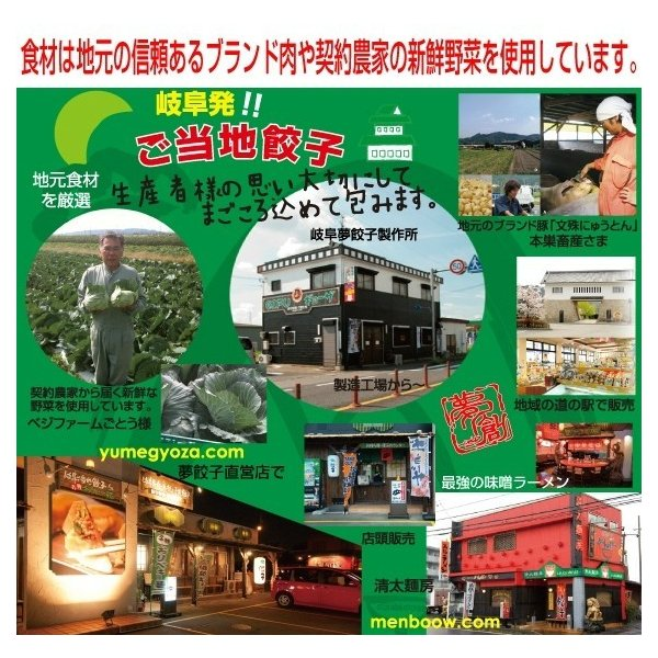 飛騨牛肉餃子 10個入り(180g) 岐阜 餃子 お取り寄せ 冷凍|yumegyoza|02