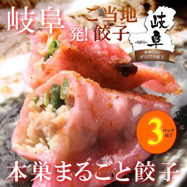 本巣まるごと餃子 10個入り(180g)×3パックセット 岐阜 餃子 お取り寄せ 冷凍|yumegyoza