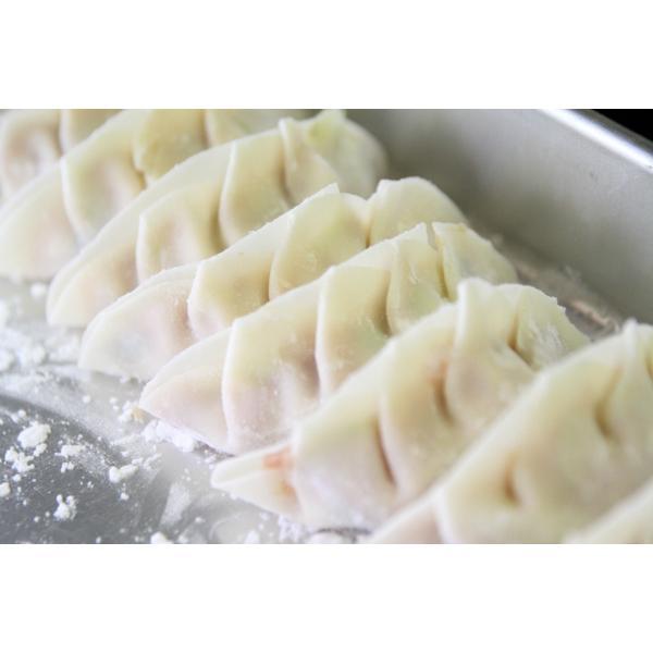 ぎふ絶品餃子 10個入り(180g) 岐阜 餃子 お取り寄せ 冷凍|yumegyoza|05