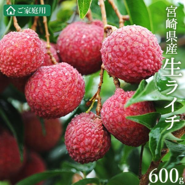 <宮崎県産生ライチ600g> 果物 フルーツ ご家庭用 宅配便 ミキファーム