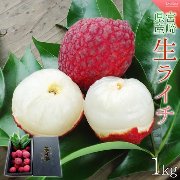 <宮崎県産生ライチ1kg(贈答箱入り)> 果物 フルーツ ギフト 宅配便 ミキファーム