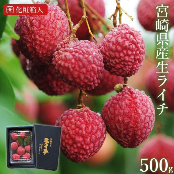 <宮崎県産生ライチ500g(贈答箱入り)> 果物 フルーツ ギフト 宅配便 ミキファーム
