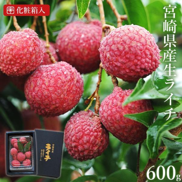 <宮崎県産生ライチ600g(贈答箱入り)> 果物 フルーツ ギフト 宅配便 ミキファーム
