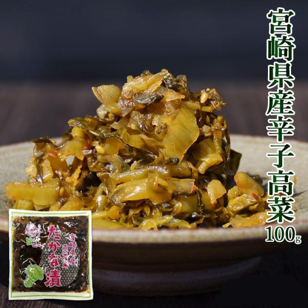 <からし高菜100g> 辛子高菜 たかな