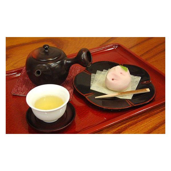 緑茶 煎茶 茶葉 玉川やまかい 100g お茶 静岡茶 お茶の葉 高級 水出し茶 シングルオリジン ティー|yunoha|03