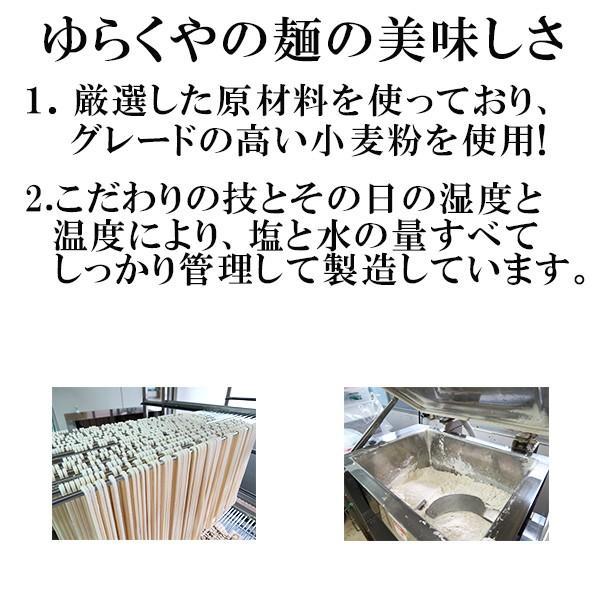 讃岐うどん 半生 讃想 いかすみうどん 1人前 つゆ付|yurakuya-udon|03