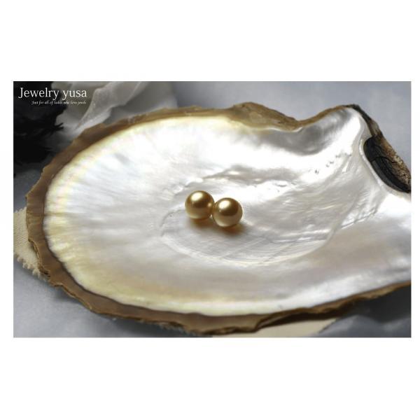 白蝶ゴールデンパール 無穴珠|yusa-jewelry|04