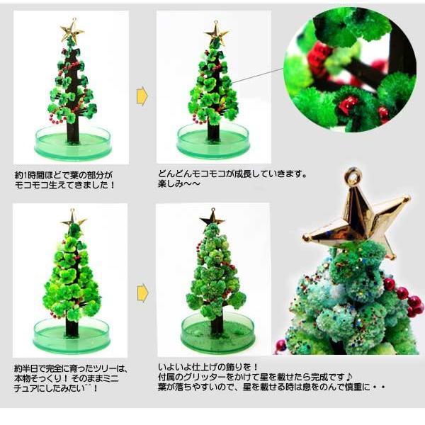 OTOGINO◆マジッククリスマスツリーLサイズ ホワイト TR-1010◆育てるクリスマスツリー ._|yusyo-shopping|03