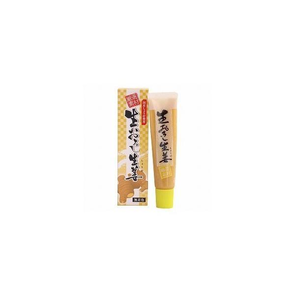 国産減農薬100%無添加生おろし生姜 40g【 コンパクト薄型・送料無料 】