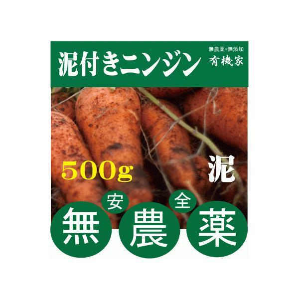 無農薬人参★ニンジン(泥つき)500g★国産人参