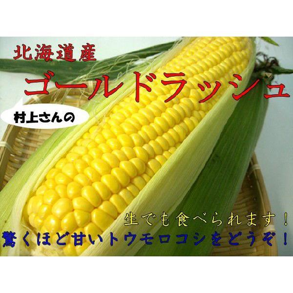 農薬不使用 生とうもろこし ゴールドラッシュ 1本  北海道 美瑛村上農園「9月中旬〜10月中旬頃」