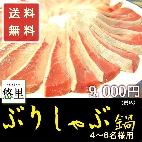 寒ブリ 鰤しゃぶ鍋セット 4から6名様 (ぶり720g)  ギフト お祝い グルメ 送料無料|yuuri