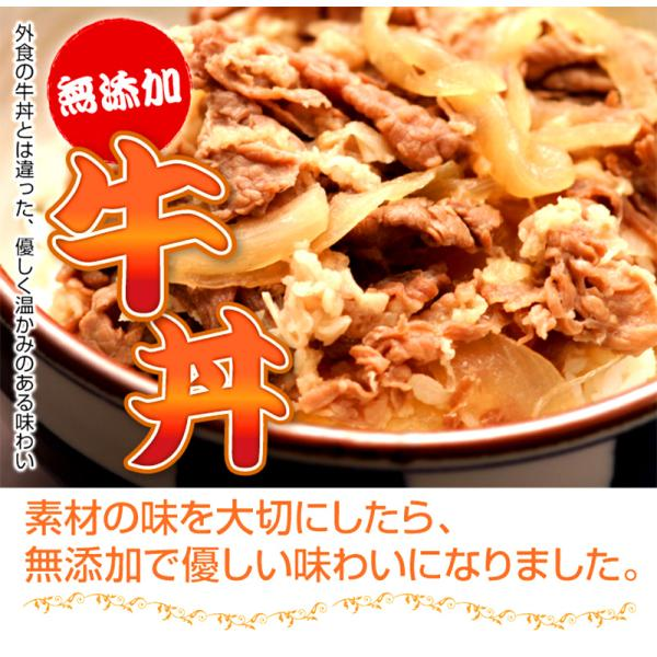 肉 牛肉 惣菜 冷凍 無添加 牛丼の具 150g×2パック 牛丼 お弁当 おかず グルメ お試し|yuuzen-hb|02