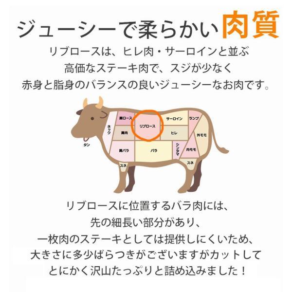 訳あり食品 端っこ 肉 牛肉 牛ロース 焼肉用 一口カット 300g 1パック 冷凍 訳あり わけあり 赤身 焼肉 バーベキュー お試し|yuuzen-hb|03