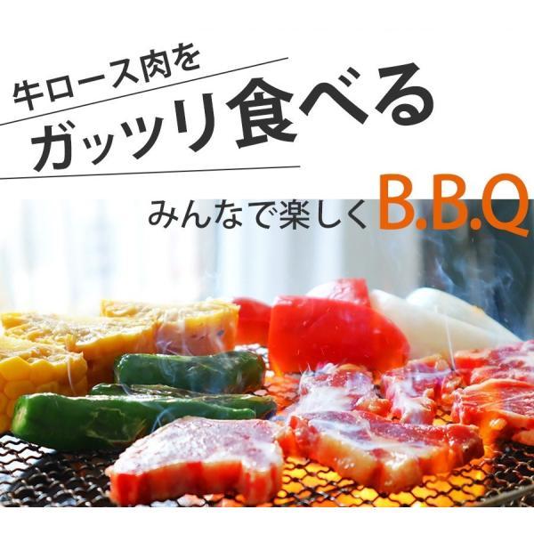訳あり食品 端っこ 肉 牛肉 牛ロース 焼肉用 一口カット 300g 1パック 冷凍 訳あり わけあり 赤身 焼肉 バーベキュー お試し|yuuzen-hb|08