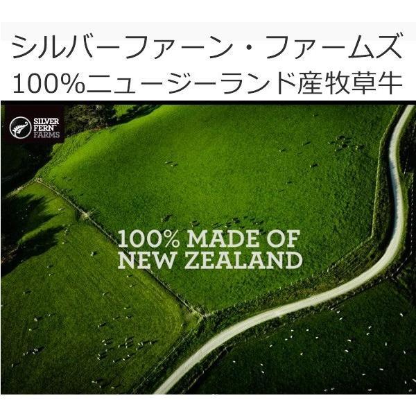 訳あり食品 端っこ 肉 牛肉 牛ヒレカット (サイドマッスル) 3キロ (300g × 10パック) 冷凍 訳あり わけあり ヒレ肉 煮込みにも 送料無料 yuuzen-hb 09