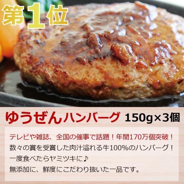 肉 惣菜 セット 冷凍 無添加 年間ベストヒットまるごとセット ハンバーグ 一人暮らし グルメ お取り寄せ 詰め合わせ お試し|yuuzen-hb|04