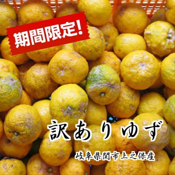 柚子訳アリ岐阜県上之保産約1kg10〜12玉ほど
