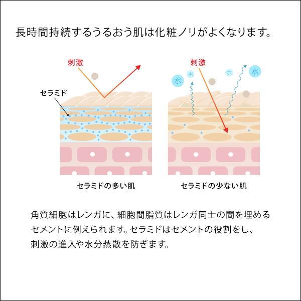 セラミド美容液  セラミド ビタミンC誘導体 美容液  乾燥肌 毛穴 インナードライ肌|yvesduffrane|05