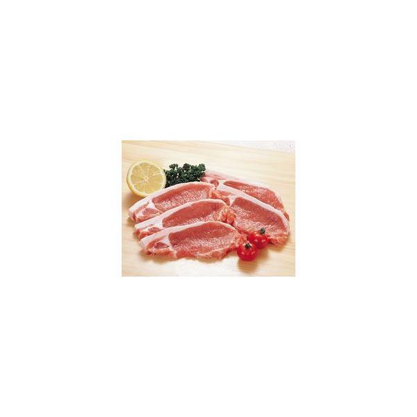 豚ロース・カツ用 100g × 5枚組 輸入 5人分 5人前 5人用 生肉 豚肉 豚カツ用 とんかつ用 カット済 そのまま使える 調理具材 料理材料 家庭用 業務用 [冷凍食品]