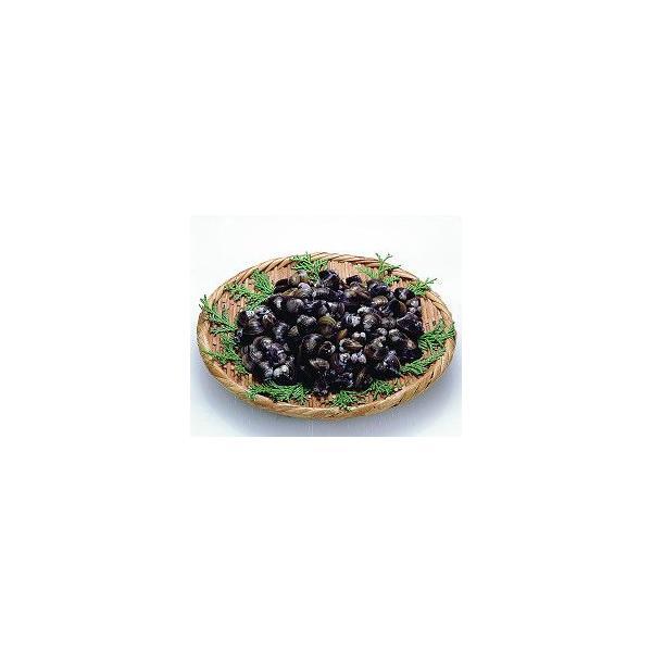 冷凍殻付しじみIQF 1kg シジミ 蜆 大容量 まとめ買い 魚介類 海鮮 調理具材 料理材料 家庭用 業務用 [冷凍食品]
