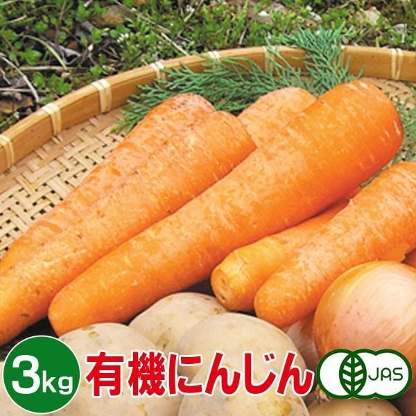 有機にんじん 3kg 有機人参 有機ニンジン 有機栽培 野菜 有機野菜 オーガニック 送料無料