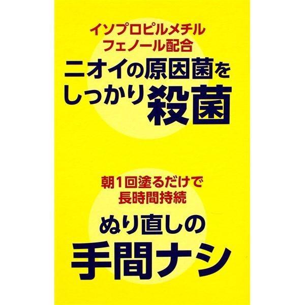 制汗剤 デオナチュレ 男ソフトストーンW ワキ用 スティックタイプ 20g 3個セット zakka-park 05