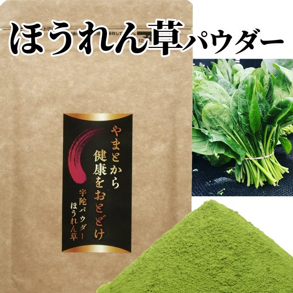 送料無料 野菜パウダー ほうれん草 パウダー 国産100% 無農薬 野菜粉末 健康 美容