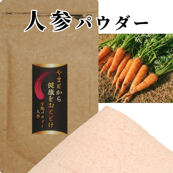 送料無料 野菜パウダー 人参 パウダー 国産100% 無農薬 野菜粉末 健康 美容