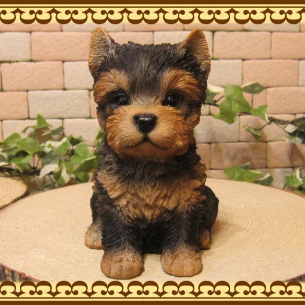 犬の置物 ヨークシャーテリア  ヨーキー お座りタイプ リアルな子いぬのフィギア イヌのオブジェ 動物オブジェ ガーデンオーナメント 装飾 フィギュア zakkakirara 04