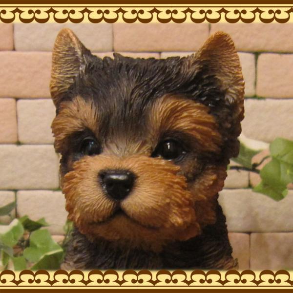 犬の置物 ヨークシャーテリア  ヨーキー お座りタイプ リアルな子いぬのフィギア イヌのオブジェ 動物オブジェ ガーデンオーナメント 装飾 フィギュア zakkakirara 07