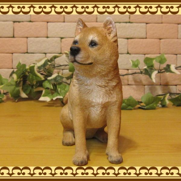 犬の置物 柴犬 お座りタイプ 柴 成犬  リアルなイヌのオブジェ いぬのフィギア 動物オブジェ ガーデンオーナメント 装飾 フィギュア モチーフ|zakkakirara|05
