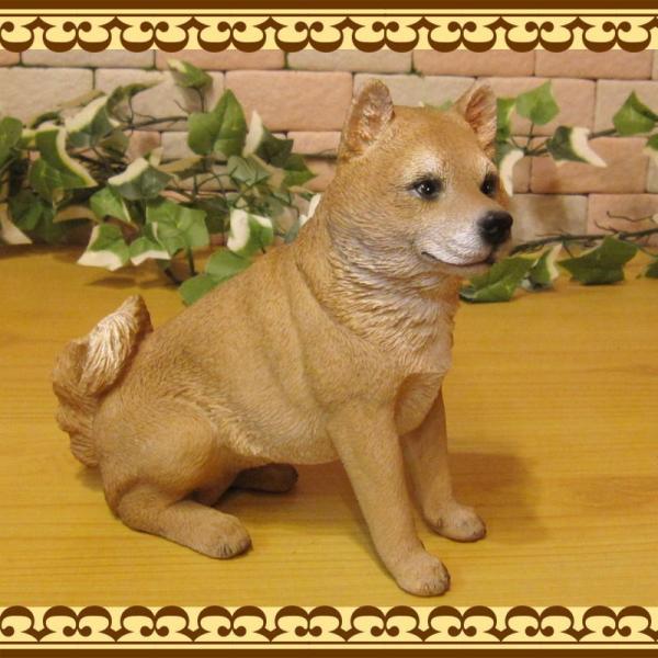 犬の置物 柴犬 お座りタイプ 柴 成犬  リアルなイヌのオブジェ いぬのフィギア 動物オブジェ ガーデンオーナメント 装飾 フィギュア モチーフ|zakkakirara|10