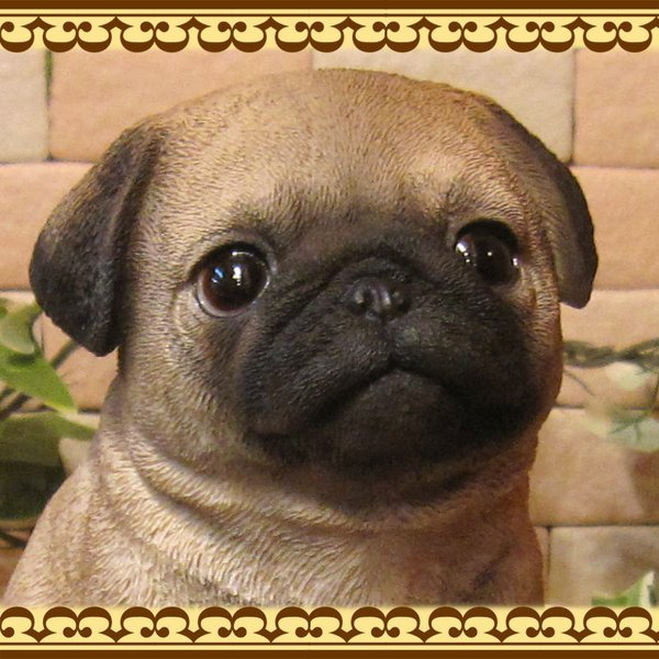 犬の置物 パグ リアルな犬の置物 お座りタイプ 子いぬのフィギア イヌのオブジェ ガーデニング 玄関先 陶器 zakkakirara 07